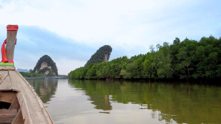 krabi river tour