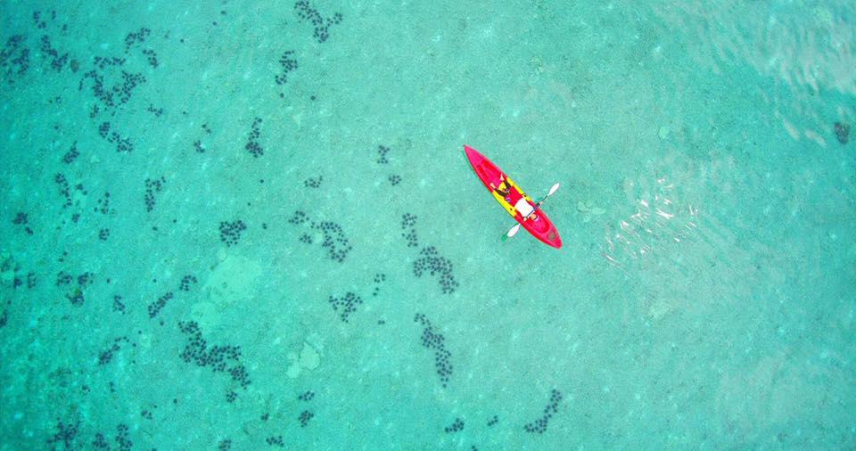 hong island kayaking tour