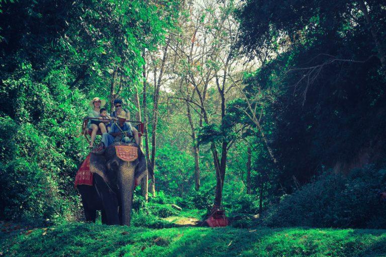 krabi elephant trekking